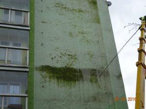 Průběh odstraňování zelených nánosů, plísní a dalších zdraví škodlivých mikroorganismů z bytového domu společností Umyjemto.